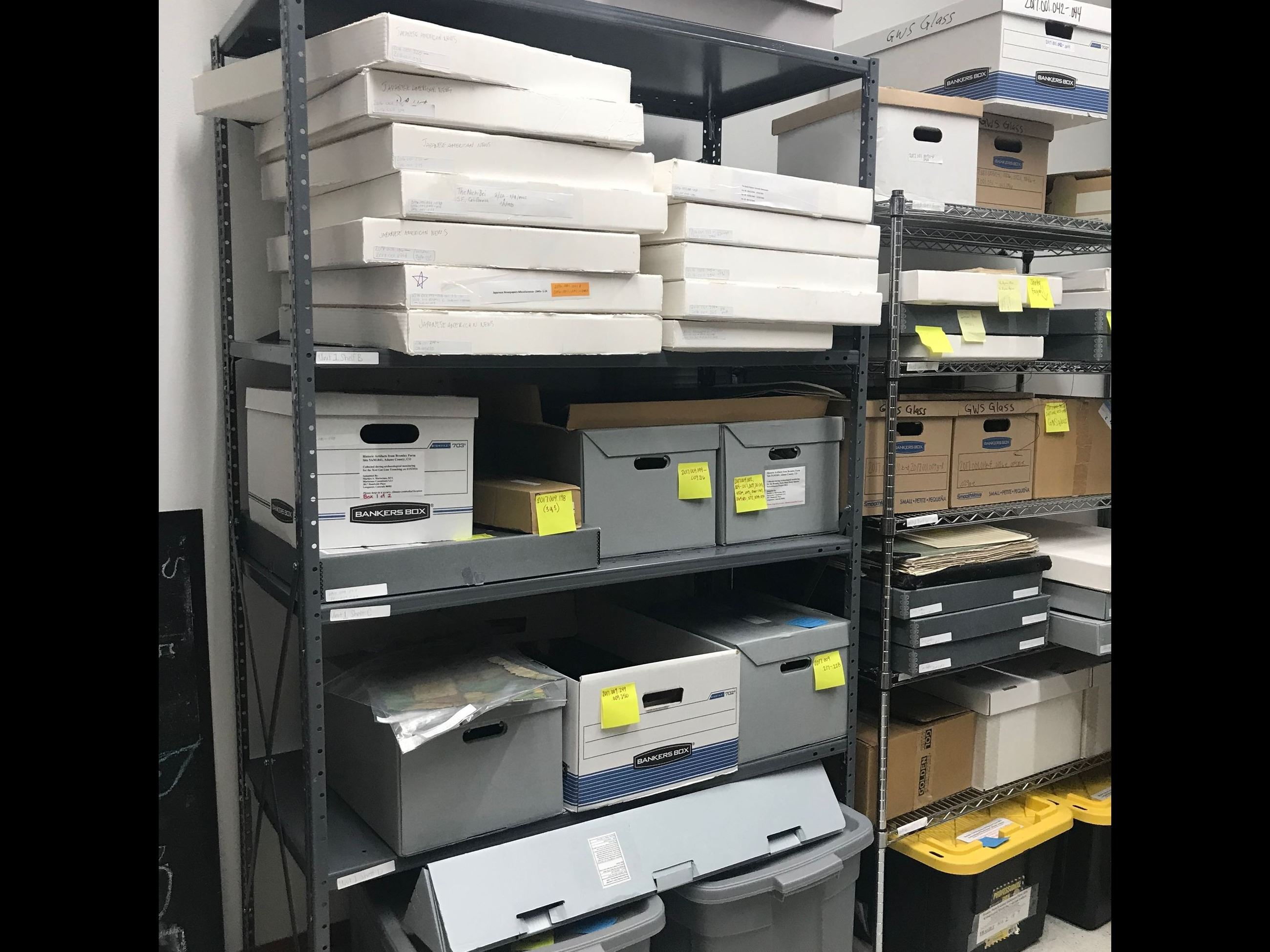 Collections Room1