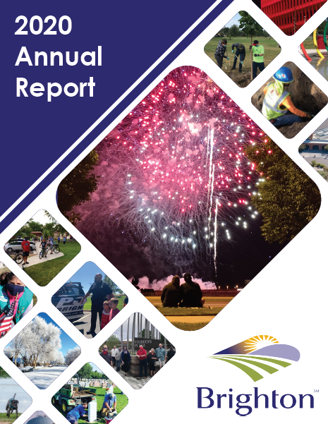 Annual_Report_2020_web-1